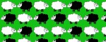 Obojek Sheep Dream Green - Vzor