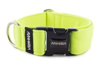 Collar Neon Yellow