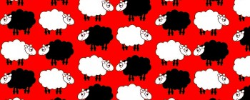 Sheep Dream Red
